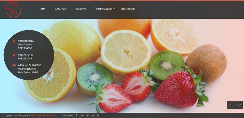 fitmealsdietaryservices.com